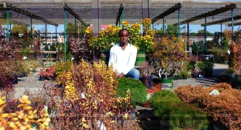 Autumn Bloom (12)